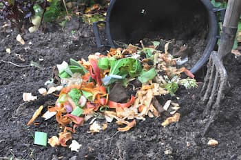compost too wet - how wet should compost be - how moist should compost be - compost bin