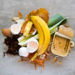 organic materials - food waste - how to begin composting at home